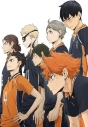 【DVD】TV ハイキュー!! セカンドシーズン Vol.9の画像