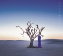 【主題歌】TV ソードアート・オンライン アリシゼーション ED「アイリス」/藍井エイル 初回生産限定盤の画像