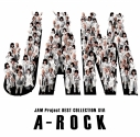 【アルバム】JAM Project/JAM Project BEST COLLECTION XIIIの画像