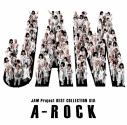 【アルバム】JAM Project/JAM Project BEST COLLECTION XIIIの画像
