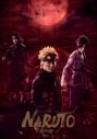 【Blu-ray】舞台 ライブ・スペクタクル「NARUTO-ナルト-」~暁の調べ~ 2019 完全生産限定版 アニメイト限定セットの画像