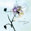 【アルバム】ChouCho/naked gardenの画像