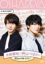 【DVD】オールナイトニッポンi 太田基裕と崎山つばさのおしゃべやDVD 2の画像