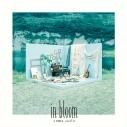 【アルバム】斉藤壮馬/in bloom アート盤の画像