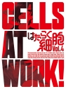 【DVD】TV はたらく細胞 4 完全生産限定版の画像