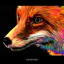 【アルバム】Fo'x Tails/INCEPTION 初回限定盤の画像