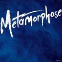 【アルバム】新妹魔王の契約者 Metamorphose 1の画像