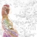 【主題歌】TV バジリスク~桜花忍法帖~ OP「桜花忍法帖」/陰陽座の画像