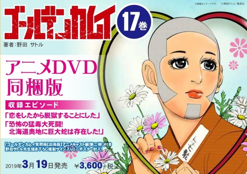 【コミック】ゴールデンカムイ(17) アニメDVD同梱版