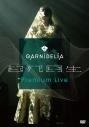 【DVD】GARNiDELiA/GARNiDELiA 起死回生 Premium Liveの画像