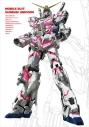 【DVD】機動戦士ガンダムUC DVD-BOX [実物大ユニコーンガンダム立像完成記念商品]の画像