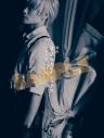 【グッズ-パンフレット】舞台「文豪ストレイドッグス DEAD APPLE」 パンフレットの画像