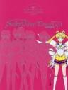 【ビジュアルファンブック】劇場版「美少女戦士セーラームーンEternal」公式ビジュアルBOOKの画像