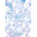 angela-アンジェラ-/PV-COLLECTION 宝島-TREASURE ISLAND-