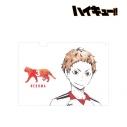 【グッズ-クリアファイル】ハイキュー!! 夜久衛輔 Ani-Art クリアファイルの画像