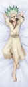 【グッズ-ピローケース】Dr.STONE 描き下ろしスムース抱き枕カバー 石神千空の画像